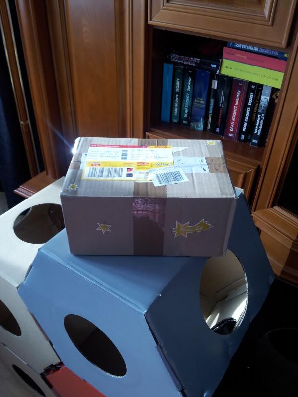 bilder weihnachts wichteln 2012 seite 35 katzen forum. Black Bedroom Furniture Sets. Home Design Ideas