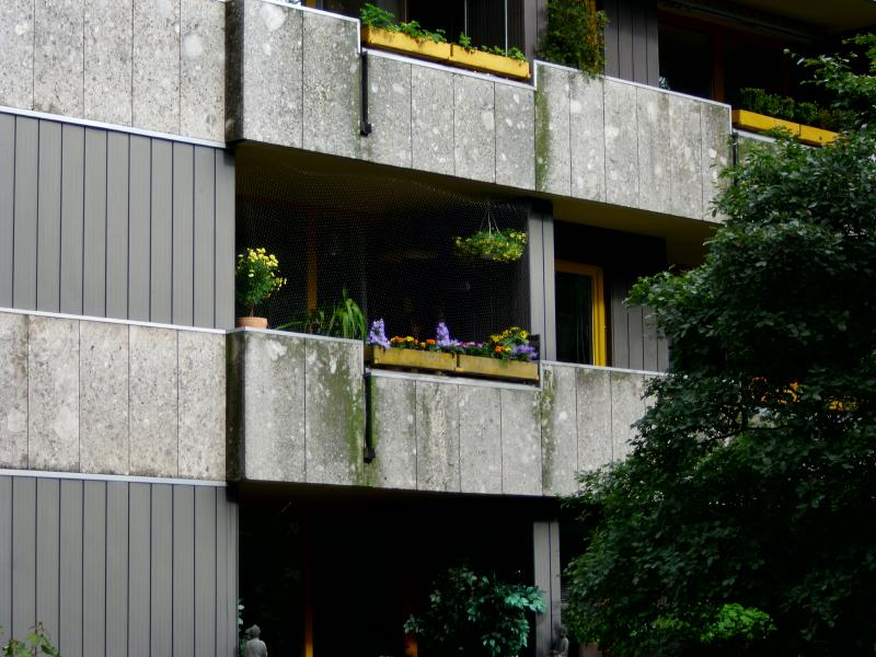 verbot von kratzbaum auf balkon seite 6 katzen forum. Black Bedroom Furniture Sets. Home Design Ideas