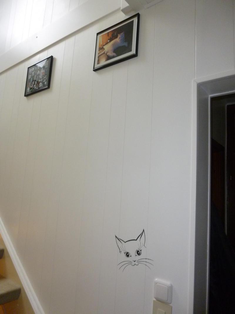 meine alten und neuen katzen seite 547 katzen forum. Black Bedroom Furniture Sets. Home Design Ideas