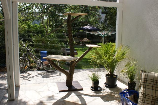 outdoor kratzbaum seite 2 katzen forum. Black Bedroom Furniture Sets. Home Design Ideas