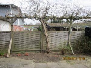 Berühmt Terrasse einzäunen, brauche Tips CX11