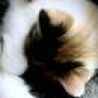 Rötlicher Kot Was Kann Das Sein